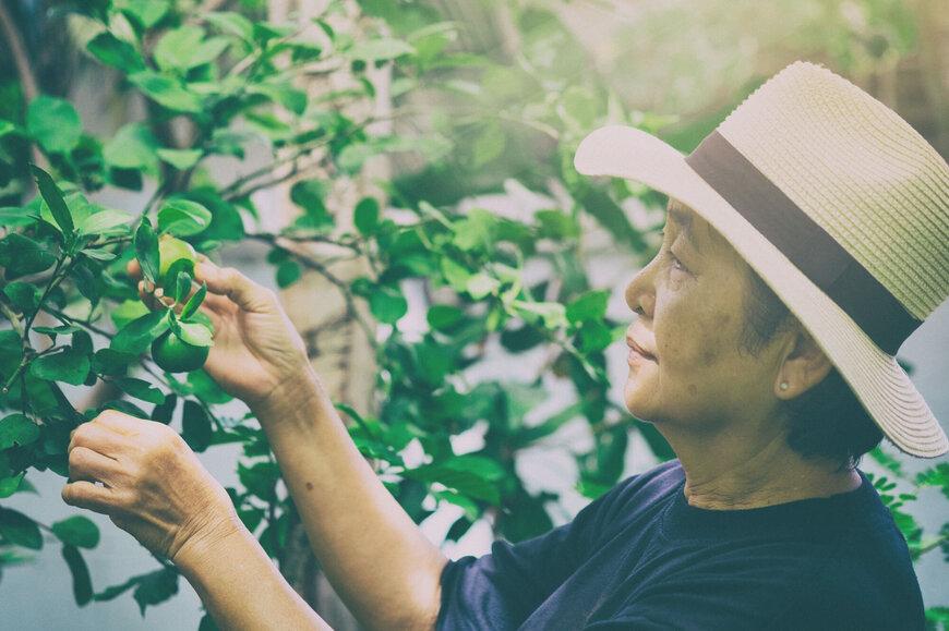 Dementia Care Montgomery AL